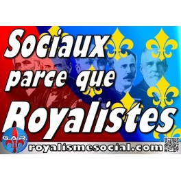 """50 autocollants  """"Sociaux parce que royalistes"""" :"""