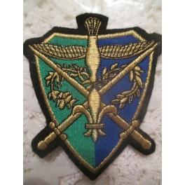 Ecusson Camelot vert/bleu