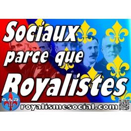 """Lot de 25 affiches """"Sociaux parce que royaliste"""""""
