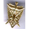 Pin's plaque Camelot