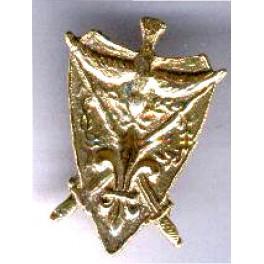 Pin's plaque Camelot